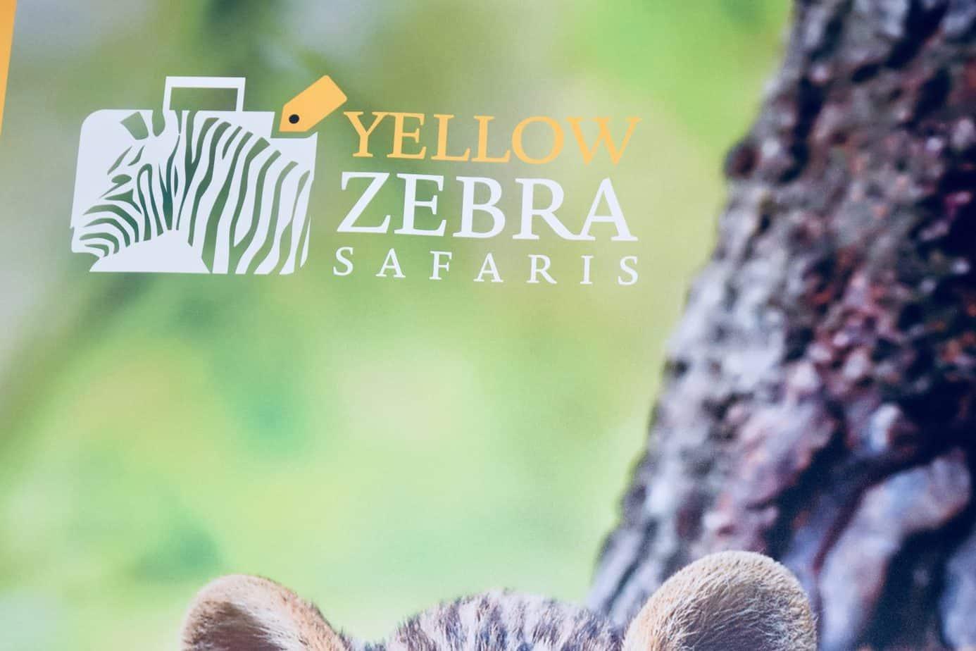 Yellow Zebra Safaris band logo