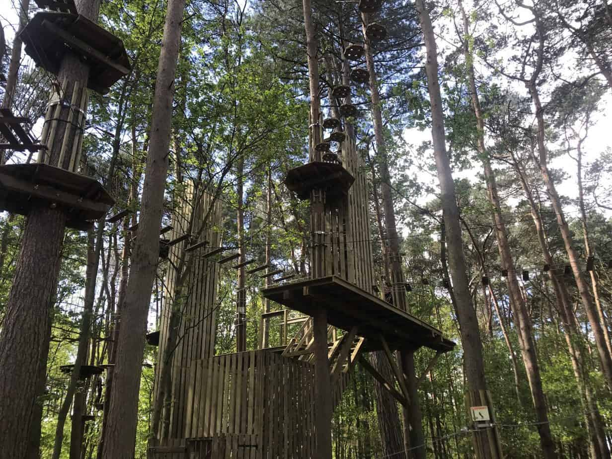 Go Ape Coombe Abbey Coventry Review