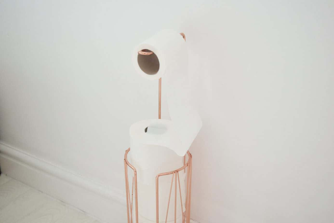 rose gold toilet paper holder from homesense