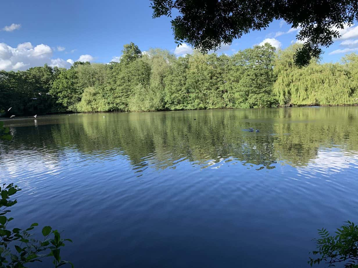 Large Lake at Elmdon Park Solihull Best park in solihull and beyond