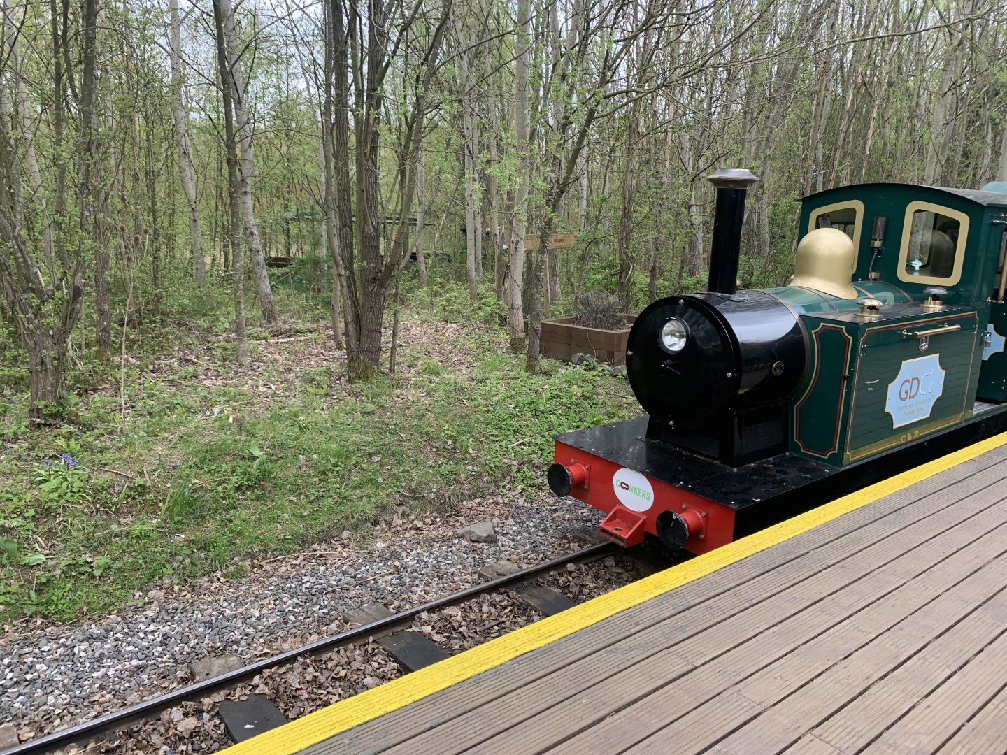 Conkerchoo Train arriving into the station at Conkers