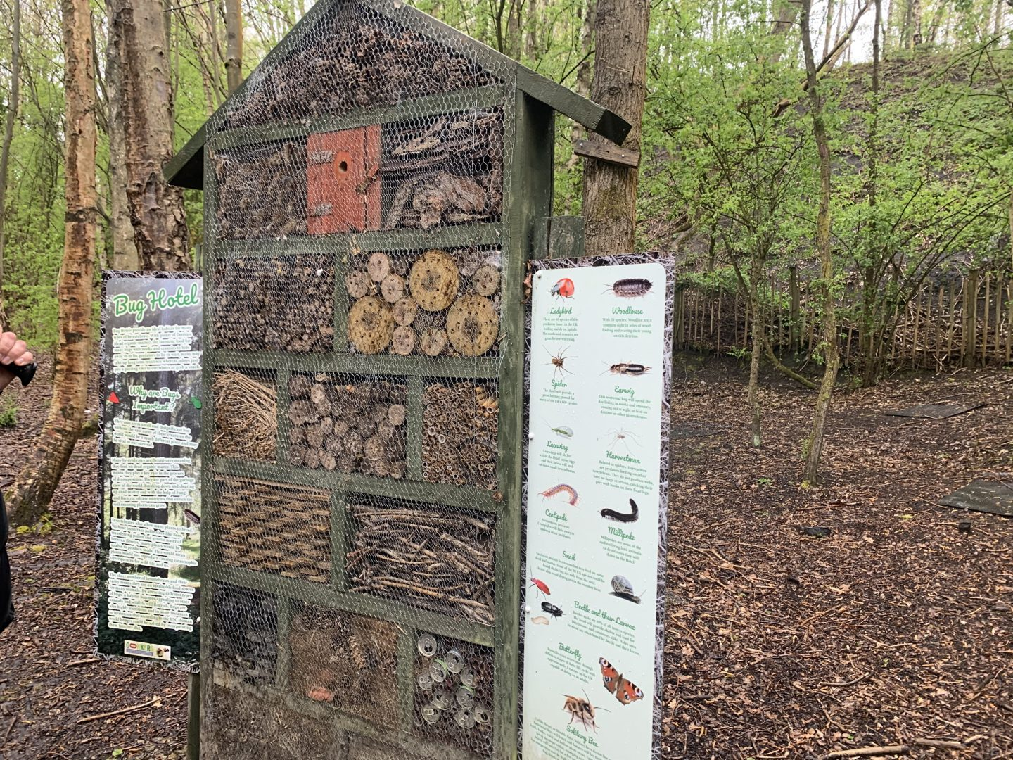 A huge bug house within the woodlands at Waterside