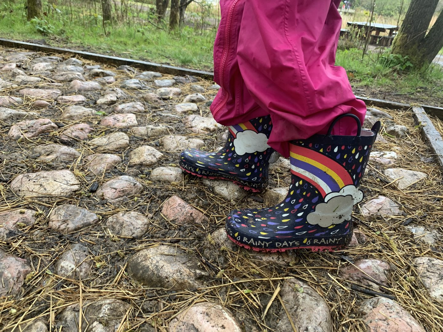 Barefoot Walk at Conkers Review