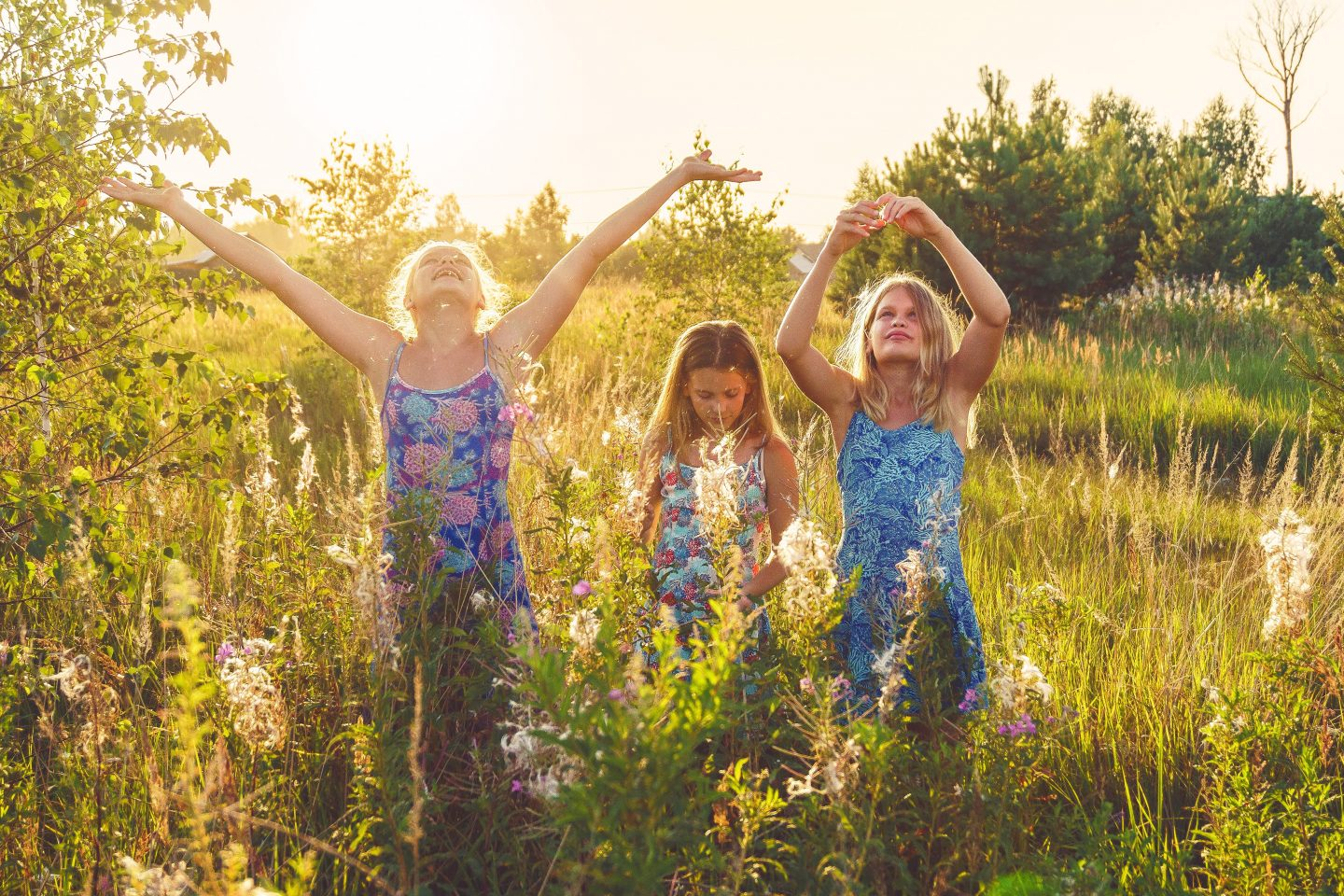 How to raise an environmentally conscious child three children in a field with the sunset behind them